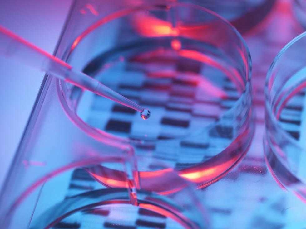 El despertar de las 'startups' biotecnológicas