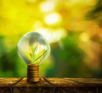 Tres 'startups' para ganar dinero invirtiendo de forma sostenible