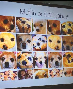 Sabotaje al 'machine learning': ¿chihuahua o 'muffin'?