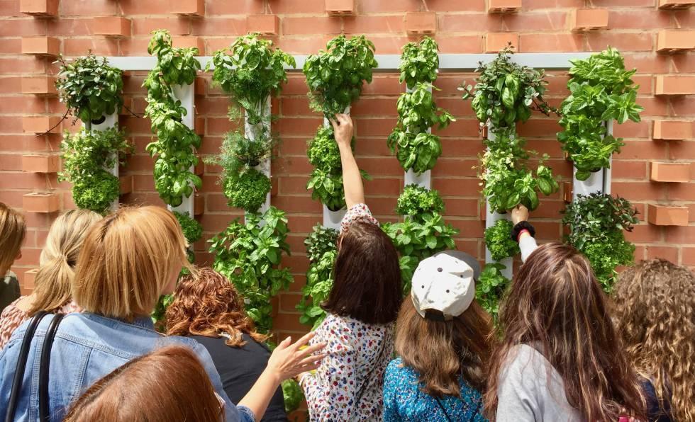 El jardín vertical para urbanitas que se controla desde el móvil ...