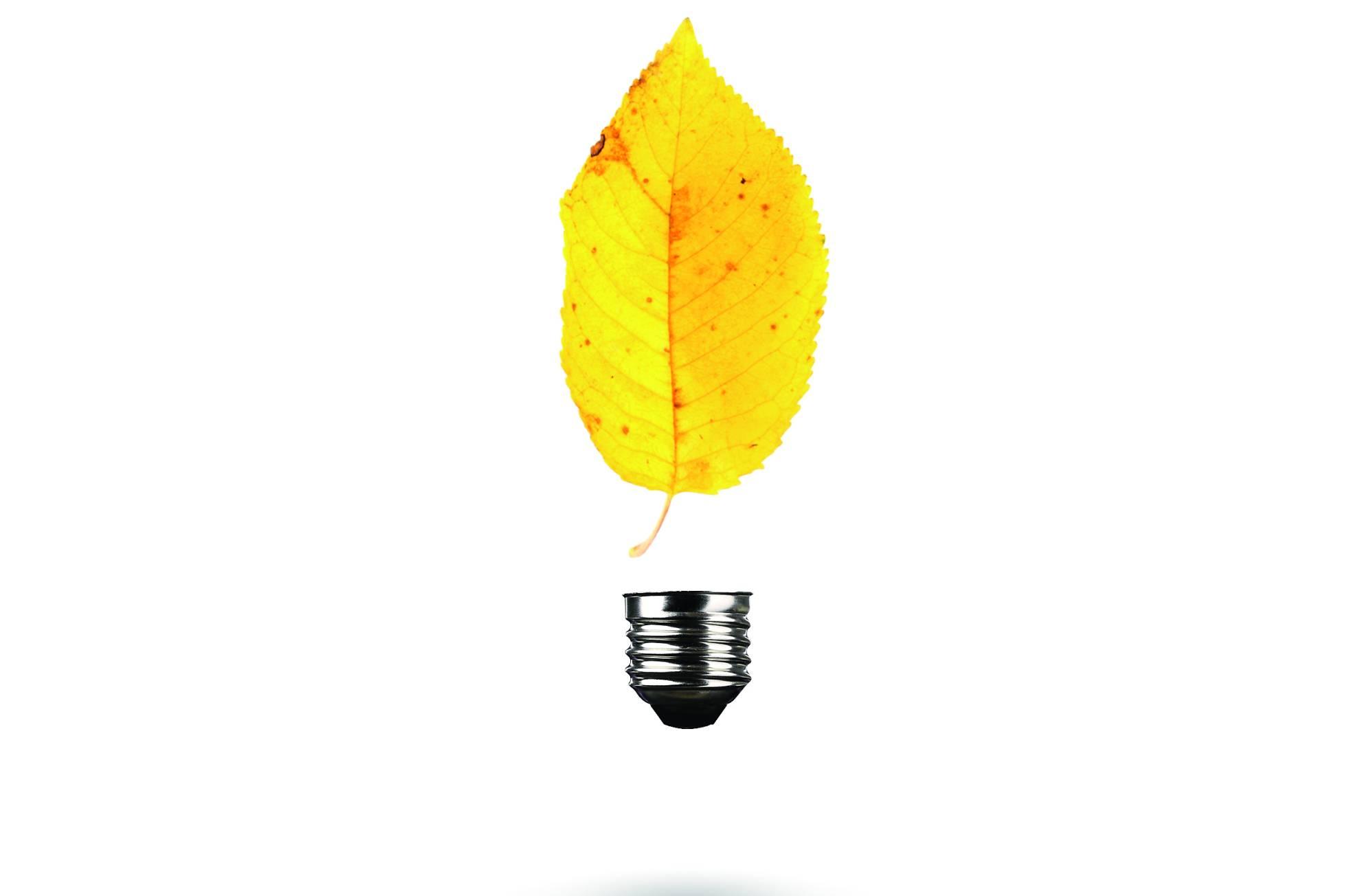¿Falta mucho para la energía limpia? Así avanza el lento divorcio del combustible fósil