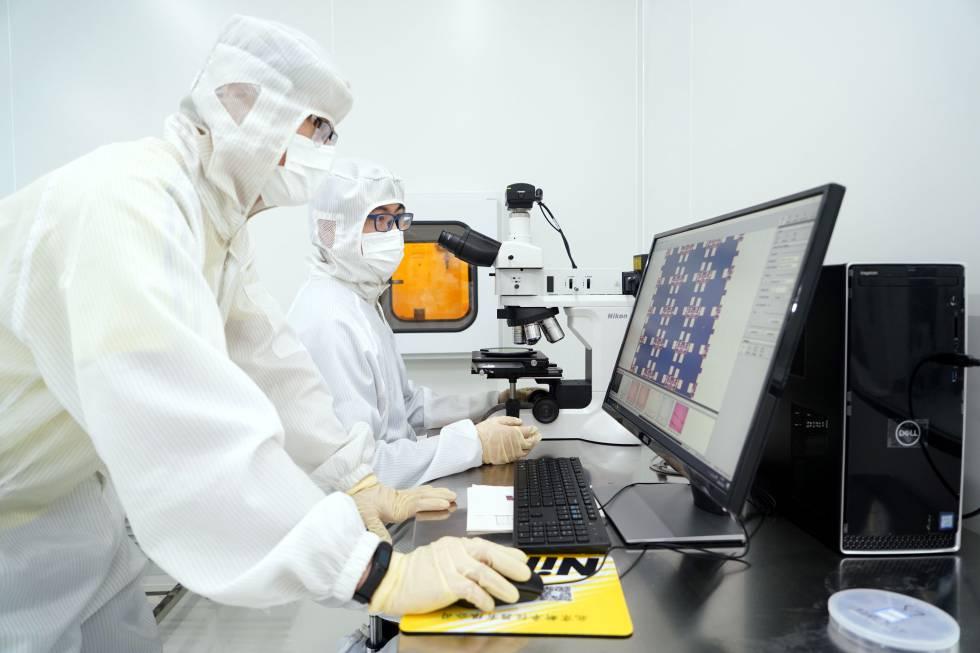 Dos investigadores usan un microscopio óptico para examinar una estructura con nanotubos de carbono y un científico manipula semillas germinadas en los laboratorios Geves, en Beaucouzé, Francia.